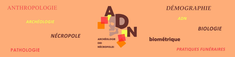 Archéologie des nécropoles